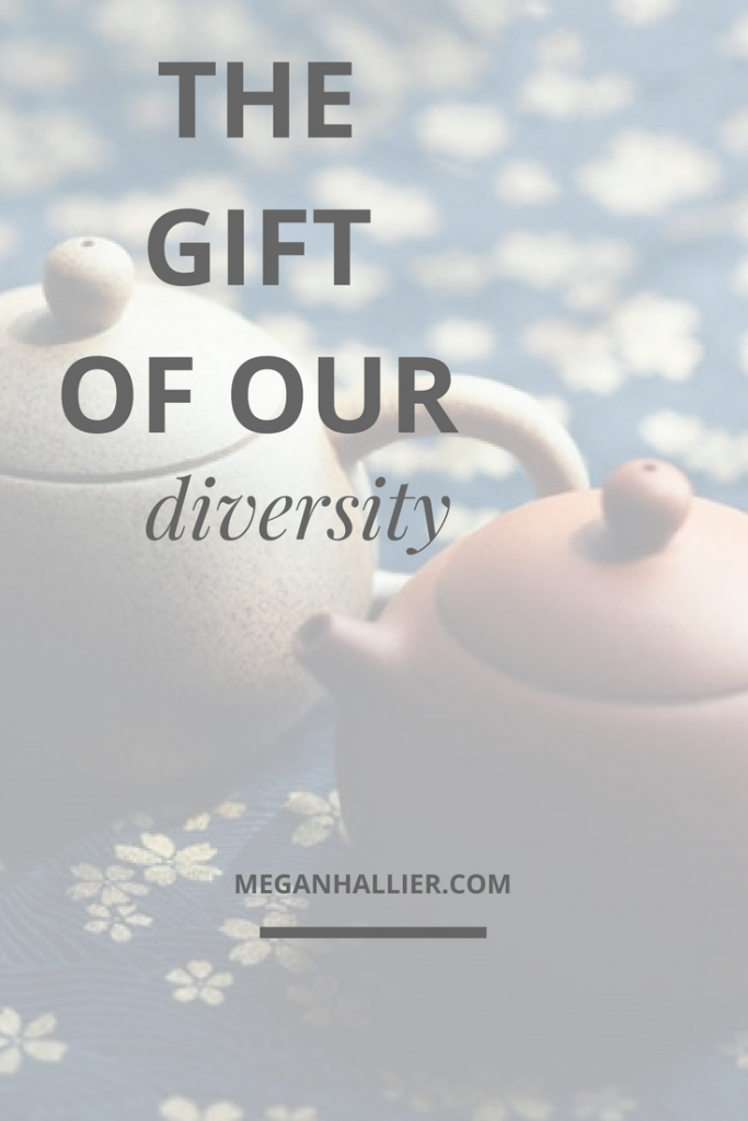 the-gift-of-our-diversity