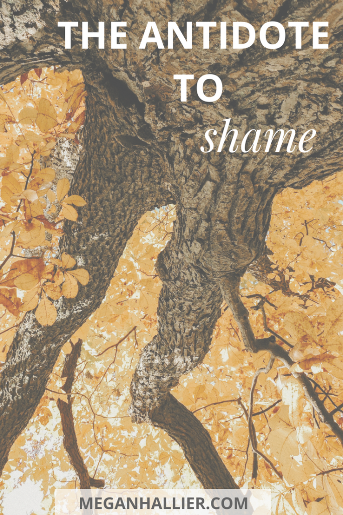antidote to shame, shame, faith, intentional living, healing, hope, God,